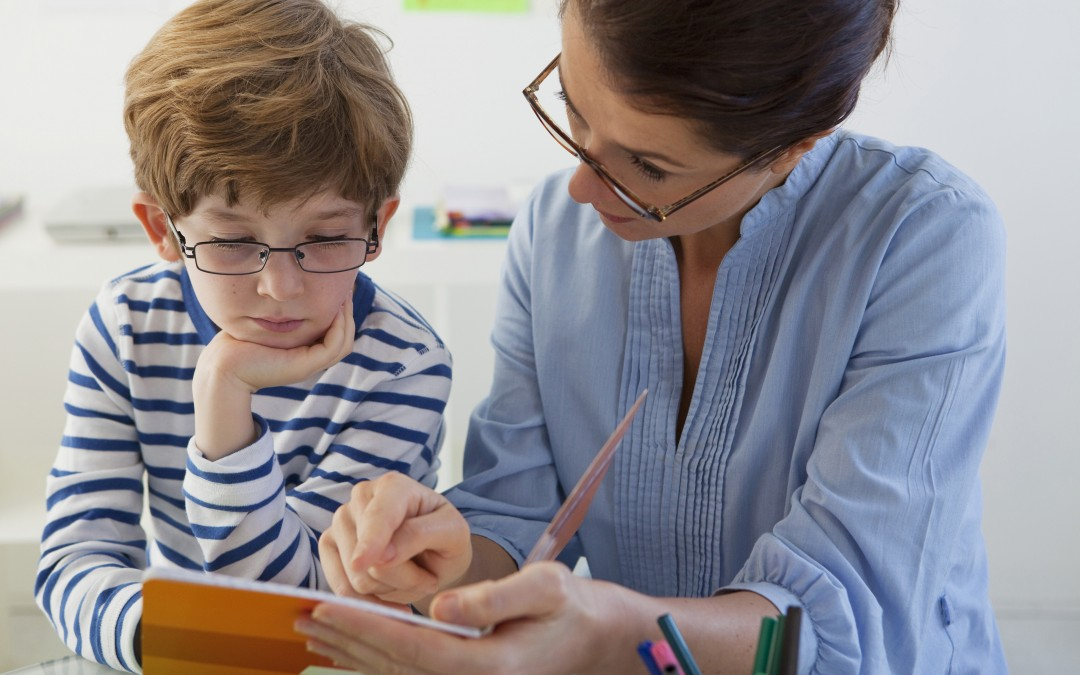 Are Teachers Receiving Adequate Professional Training?